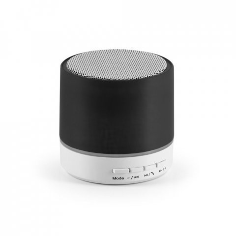 97253.03<br> PEREY. Speaker with microphone